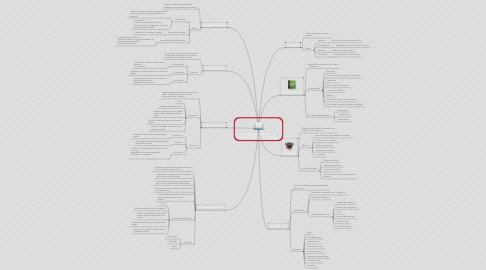 Mind Map: Guia para la producción de textos académicos y/o cientifica