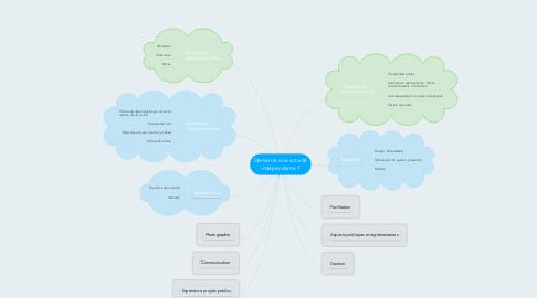 Mind Map: Démarrer une activité indépendante ?