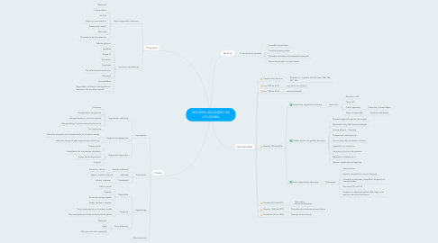 Mind Map: RÉGIMEN ADUANERO EN COLOMBIA