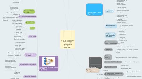Mind Map: TIPOS DE SOCIEDADES Elaborado por: Angie Andrade Francisco Campo Liliana Pereira Lorena Pinzón