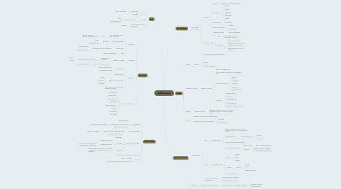 Mind Map: Middeleeuwen