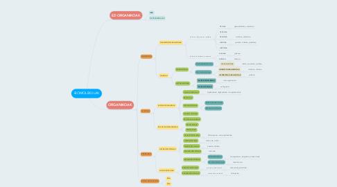 Mind Map: BIOMOLEKULAK