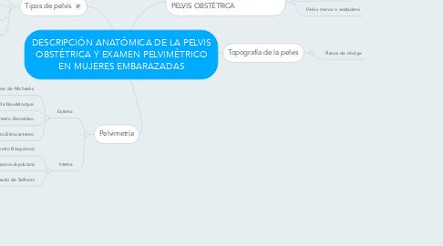 Mind Map: DESCRIPCIÓN ANATÓMICA DE LA PELVIS OBSTÉTRICA Y EXAMEN PELVIMÉTRICO EN MUJERES EMBARAZADAS