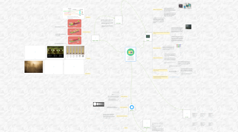 Mind Map: Camera Settings: - Aperture - Depth of Field -Camera Sensors