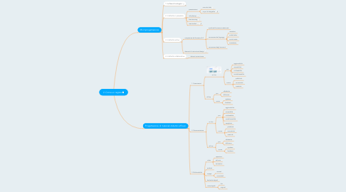 Mind Map: 2. Come un regista