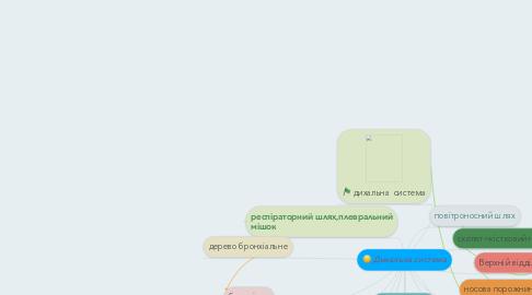 Mind Map: Дихальна система