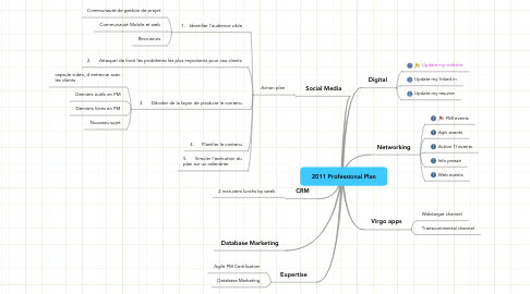 Mind Map: 2011 Professional Plan