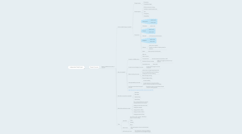Mind Map: Independent Study Project