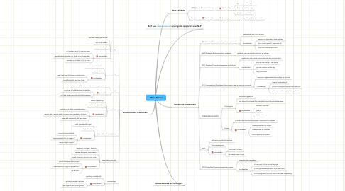 Mind Map: Milton Model