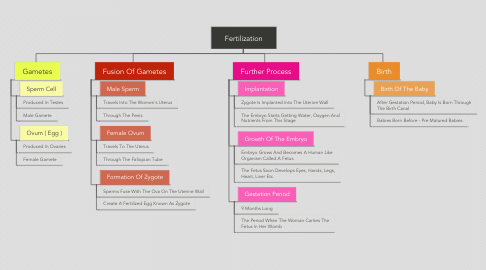 Mind Map: Fertilization