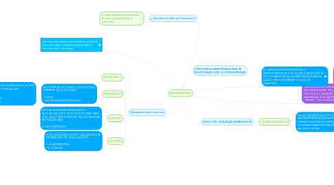 Mind Map: BIODIVERSIDAD