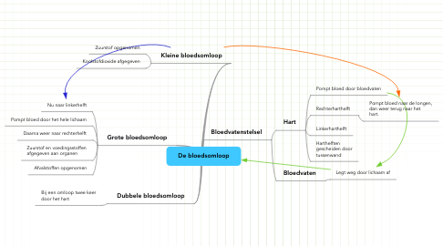Mind Map: De bloedsomloop