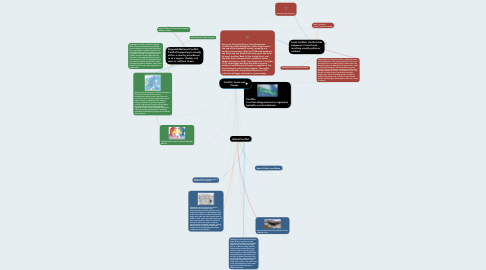 Mind Map: Conflict: Scale and Causes