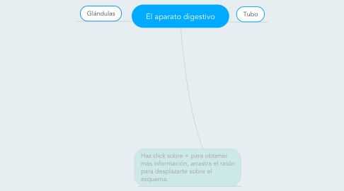 Mind Map: El aparato digestivo