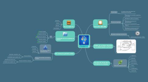 Mind Map: Sistema de gestión de la calidad.