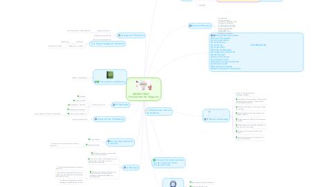Mind Map: MARKESTRAF     Simuladores de Negocios