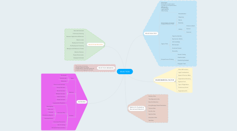 Mind Map: SELECTION