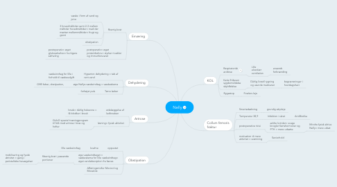 Mind Map: Nelly