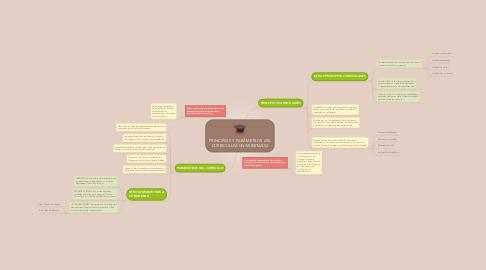 Mind Map: PRINCIPIOS Y PARÁMETROS DEL CURRICULUM UNIVERSITARIO