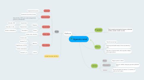 Mind Map: Aparato renal