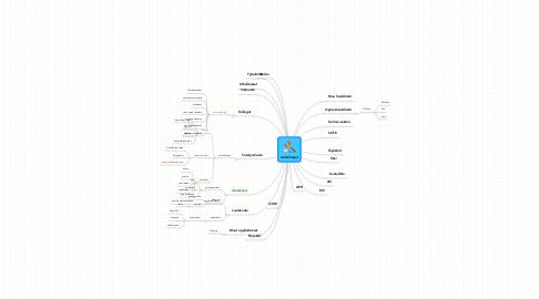 Mind Map: IsotJohtajat