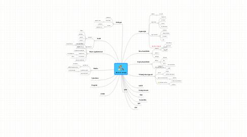 Mind Map: Rehtori/Johtaja