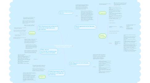 Mind Map: Organizaciones mundiales que atienden la política social