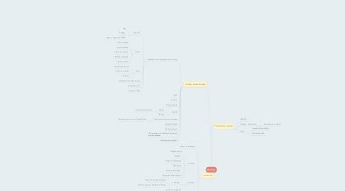 Mind Map: Briefing