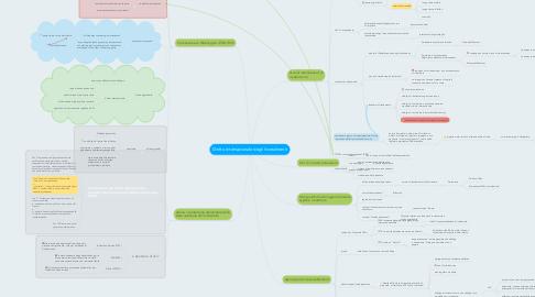 Mind Map: Diritto Internazionale degli Investimenti
