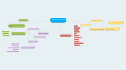 Mind Map: Evaluación de Portafolio de evidencias
