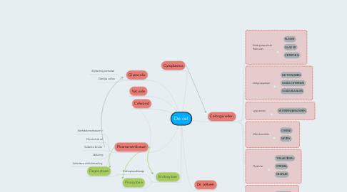 Mind Map: De cel