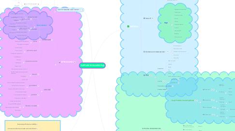 Mind Map: SUPPLIER EVALUATION