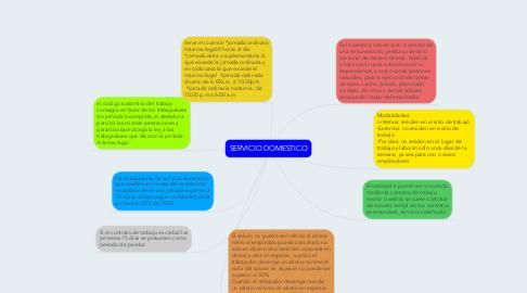 Mind Map: SERVICIO DOMESTICO