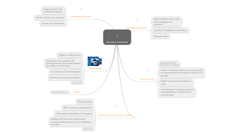 Mind Map: DECLARANT EN DOUANE