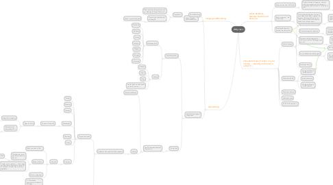 Mind Map: Willy Jak's
