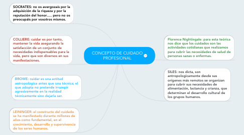 Mind Map: CONCEPTO DE CUIDADO PROFESIONAL