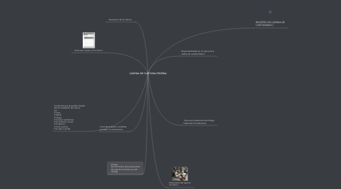 Mind Map: CADENA DE CUSTODIA FEDERAL