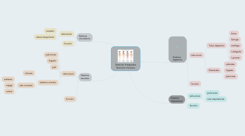 Mind Map: Sistemas Integrados Nutrición Humana