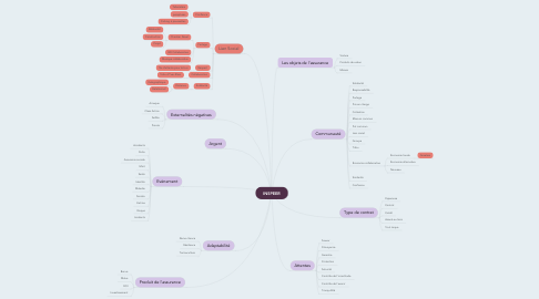 Mind Map: INSPEER