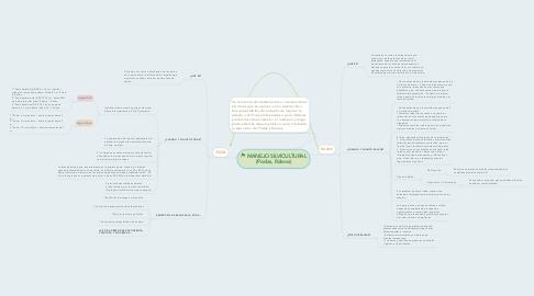 Mind Map: MANEJO SILVICULTURAL (Podas, Raleos)