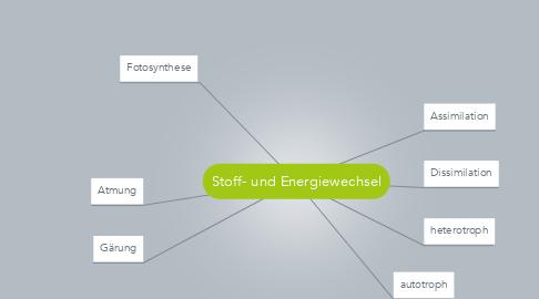 Mind Map: Stoff- und Energiewechsel