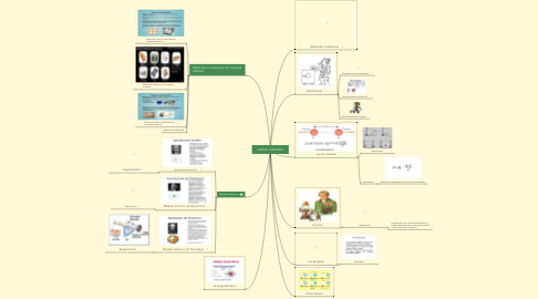Mind Map: CARGA Y MATERIA