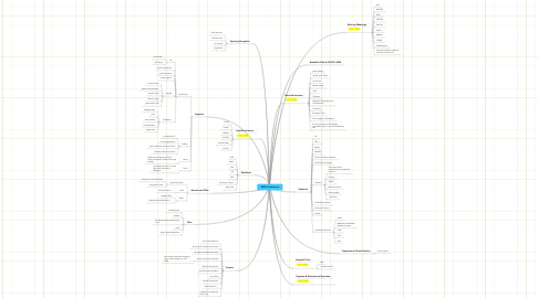 Mind Map: 2009 Conference