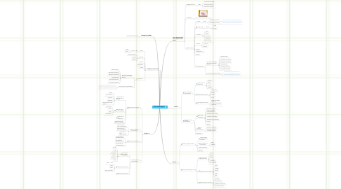 Mind Map: Minor Mediawijsheid
