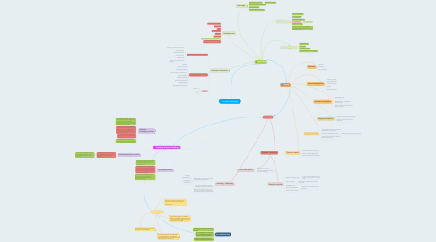 Mind Map: Stretch and Challenge