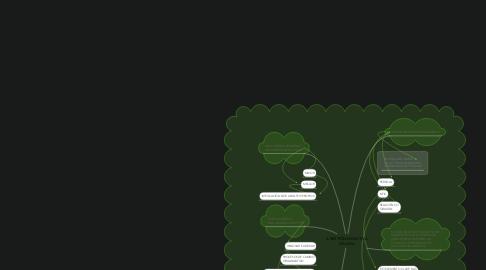 Mind Map: A XESTIÓN MUNICIPAL GALEGA