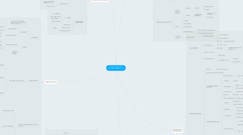Mind Map: TRANSFORMACIONS ECONOMIQUES INICI s.XX