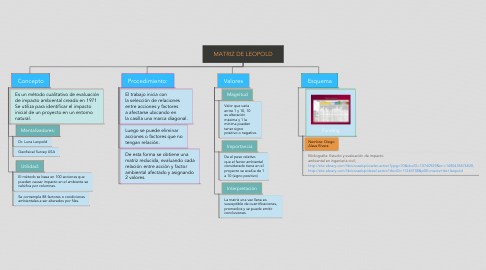 Mind Map: MATRIZ DE LEOPOLD