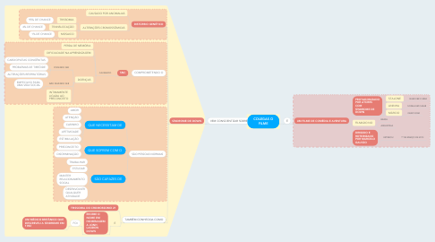 Mind Map: COLEGAS O FILME