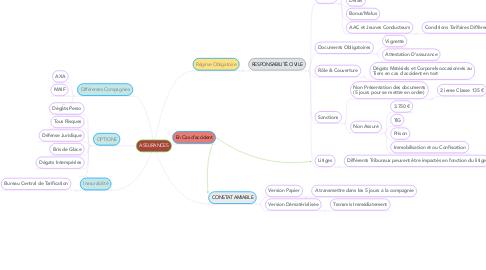 Mind Map: ASSURANCES